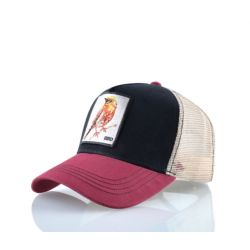 Gorra Animal Pajaro Bird...
