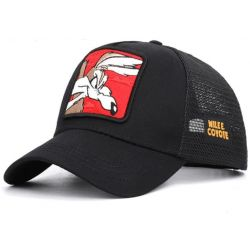 Gorra Wilee Coyote Looney Tunes